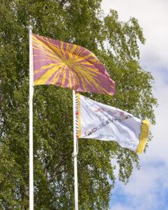 Flag artworks flying